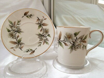 ♡ ROYAL ADDERLEY ARCADIA DUO TEACUP & SAUCER  more instore