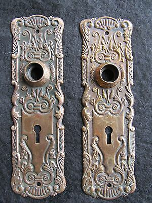 Gorgeous Pair of Antique Brass Backplates