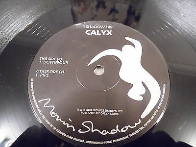 "Calyx - Downpour - Ripe - Moving Shadow - Drum And Bass - 12"" - 2000"