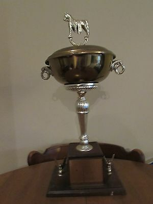 Vintage Champion Horse Trophy 1965 M.S.S.C.A Spotted Horse Pleasure-Awesome