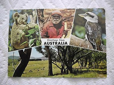 1964 Greetings from Australia