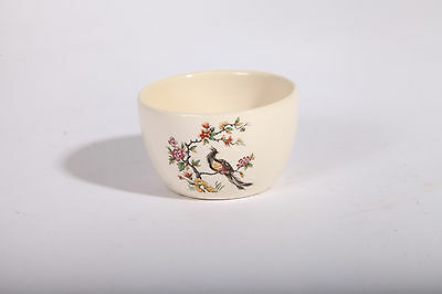 New Devon Pottery Newton Abbot small dish bowl with peacock design
