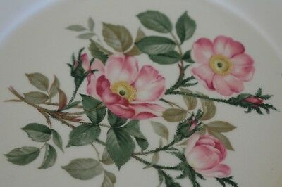 """The Harker Pottery Co./""""Wild Beach Rose"""" Plate/22K Gold Trim"""