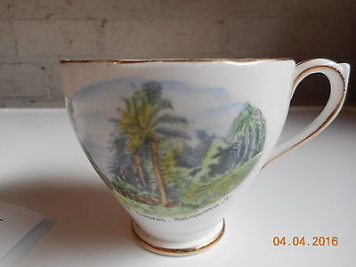 Royal Standard Fine Bone China Cup And Saucer