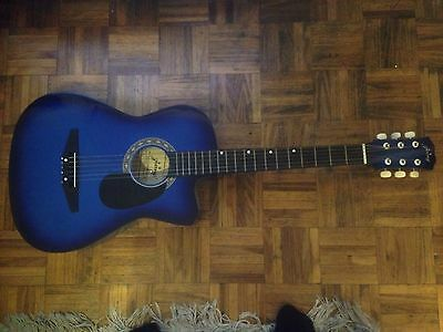 Blue Acoustic Guitar Perfect Condition With Case !