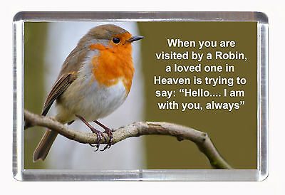 Wildlife Fridge Magnet - Robin Bird With Loss Of Loved One Poem | Naturalpix