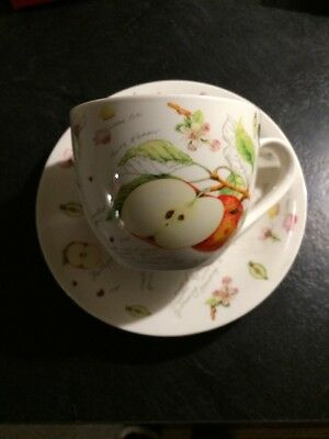 Tea Cup And Saucer Very Large For Plants Royal Sovereign