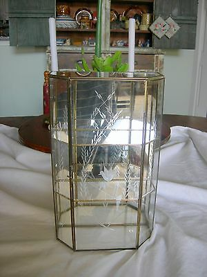 Vintage ETCHED GLASS & BRASS CURIO DISPLAY CABINET CASE Mirrored Back 12 Inches
