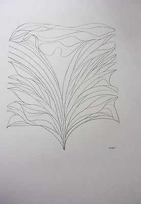 ELLIE DOMSKY - Listed Pennsylvania Artist - GRAPHITE ABSTRACT #36 signed 19 x 24
