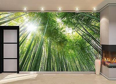 Bamboo Forest  Wall Mural Photo Wallpaper GIANT DECOR Paper Poster Free Paste
