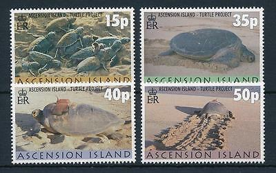 [31451] Ascension 2000 Marine Life Turtle project MNH