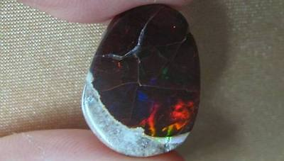 15cts/1.9cm Polished (& Cracked) Chocolate Opal But Lovely Fire