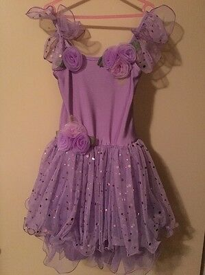 Girls Fairy Dress Up Purple Size 5