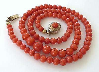 Victorian Vtg Natural Rich Red Carved Coral Bead Necklace Antique