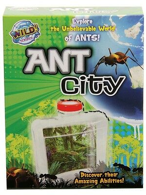 NEW Wild Science Ant City from Mr Toys Toyworld