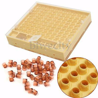 50x Cell Cups Container + Queen Bee Rearing Box Case Cell Cup Kit For Cupularve