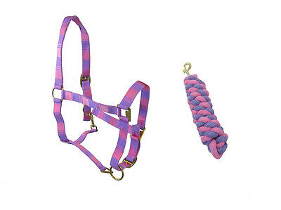 Horse (Small Pony) Pink And Purple Head Collar & Matching Lead Rope Set