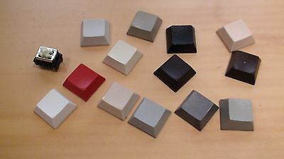 KEYBOARD SWITCH CAPS & One Momentary action keyboard switch.