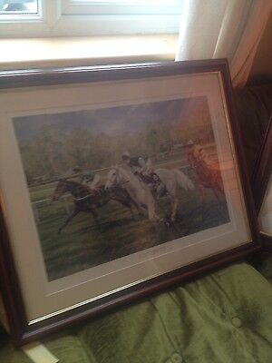 limited edition print of 'The magnificent desert orchid'