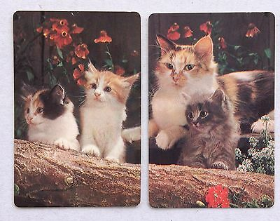 Vintage Swap / Playing Card Pair - Lovely Cats on Logs with Flowers