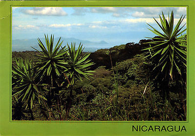 The Isthmus of Managua Nicaragua Seen From the Cruise Postcard