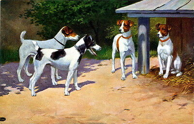 Antique Art~Four Smooth Haired Fox Terrier Puppy Dogs Friends~NEW Lge Note Cards