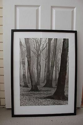 Mounted and framed Albert Renger-Patzch photograph
