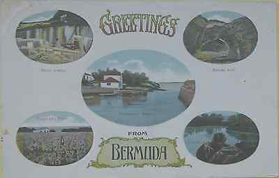 Early Colour Greetings Postcard Showing Five Images Of Bermuda