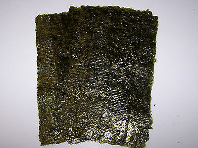 20 Sheets Dried Nori Seaweed - Marine Fish Food