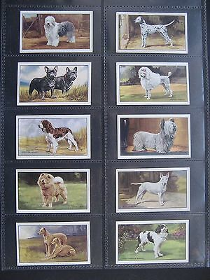 Cigarette Cards. Gallaher - Dogs 1936. Set In Sleeves.
