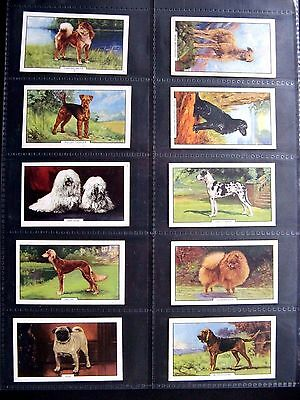 Cigarette Cards. Gallaher - Dogs 1938. 2Nd Series. Set In Sleeves.