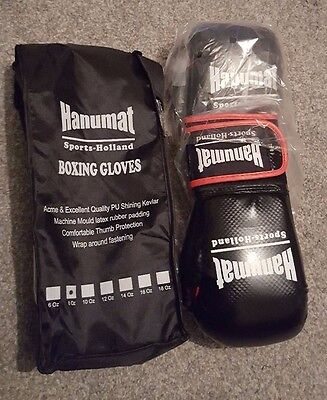 Brand New Boxing Gloves with Bag