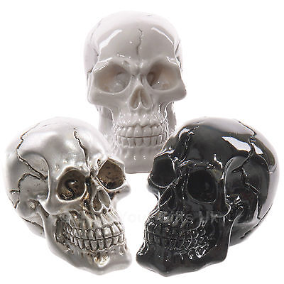 Packs of Gruesome Small Skull Decorations Gothic Day of The Dead Halloween