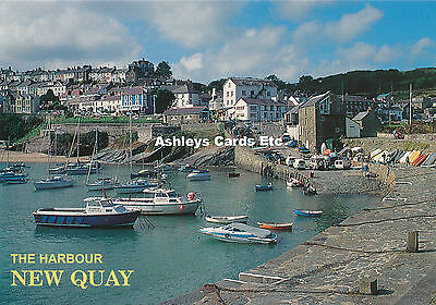 The Harbour New Quay Cardiganshire Old Postcard (D02