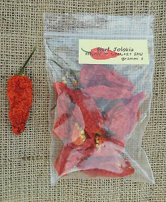 Bhut Jolokia. Peperoncino essiccato. 5 gr.