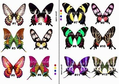 OOAK Tropical Butterfly wings transparency sheet 12 pairs