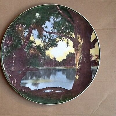 A Royal Doulton photographic plate Murray River Gums
