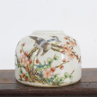 Famille Rose Beautiful Chinese Porcelain Flowers and Birds Brush Washer