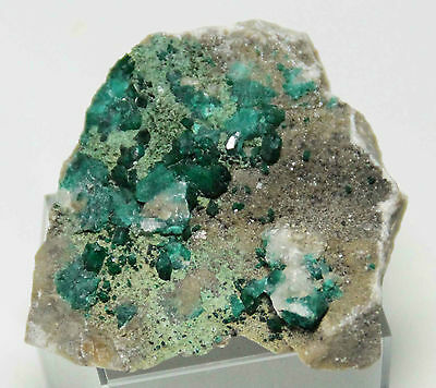 Dioptas Stufe in A Qualität 43,88g 56mm aus Tsumeb, Namibia Dioptase (11232)