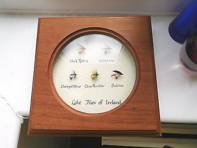 Fisherman's wood wall case with Irish lake fishing Flies of Ireland Hand crafted