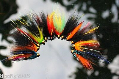 12 pcs Assorted Tube Fly Set Fly Fishing Salmon Fly Trout Flies