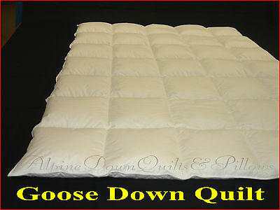 Goose Down Quilt King Size 70% Down 30% Feathers  2 Blanket  Summer Quilt