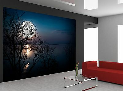 Bright Full Moon  Wall Mural Photo Wallpaper GIANT DECOR Paper Poster Free Paste