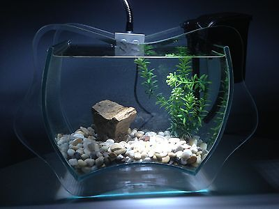 Nano Aquarium Set Completo INANGA,Incl. Decoración,Dekoartikel,Vidrio decorativo