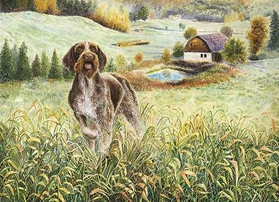 """Wirehaired Farm"" A Limited Edition German Wirehaired Pointer Print"