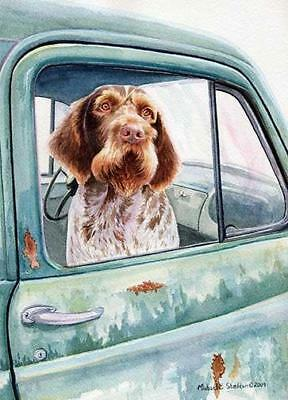 """Wait Here"" A Limited Edition German Wirehaired Pointer Print"