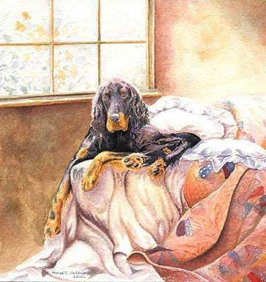 """Gordon on the Bed"" A Limited Edition Gordon Setter Print"