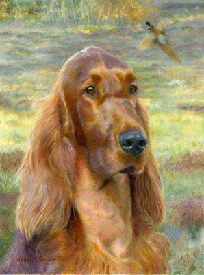 """Sporting Days"" A Limited Edition Irish Setter Print"