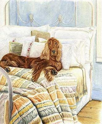 """Sleeping In"" A Limited Edition Irish Setter Print"