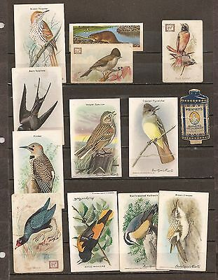 "Cow Brand - & - Others (Birds) Trade Cards - Lot Of ""23"""
